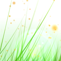 Grow A Grassy Field With Particular